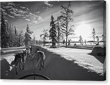 Winter Travel Canvas Print by Andreas Dobeli