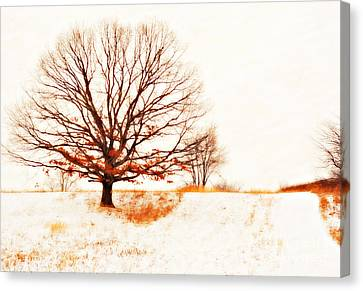 Winter Storm Canvas Print - Winter Tree by Randy Steele