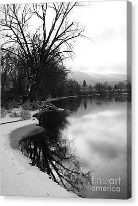 Winter Tree Reflection - Black And White Canvas Print by Carol Groenen