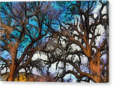 Canvas Print featuring the photograph Winter Trees At Fort Tejon Lebec California Abstract by Floyd Snyder