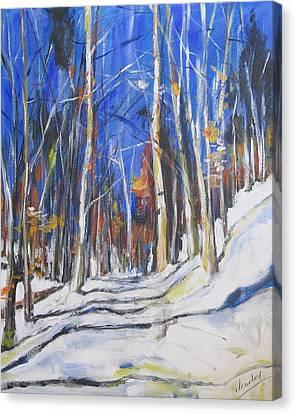 Winter Trees Canvas Print by Debora Cardaci