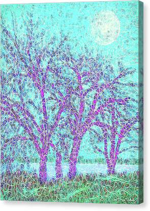 Canvas Print featuring the digital art Winter Trees In Moonlight Blue - Boulder County Colorado by Joel Bruce Wallach
