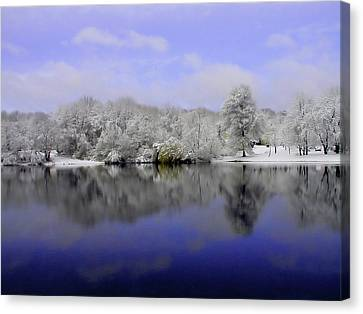 Winter View Canvas Print by Karol Livote