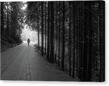 Winter Walk - Austria Canvas Print by Mountain Dreams