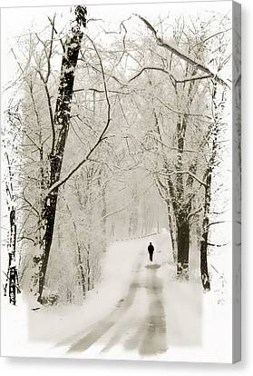 Winter Walk Canvas Print by Jessica Jenney