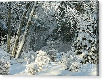 Winter White New England Bright Canvas Print by Barbara S Nickerson