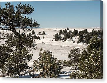 Winter Wonder Land Canvas Print