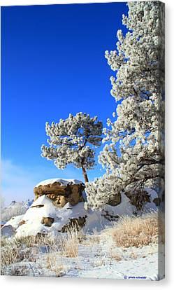 Giselaschneider Canvas Print - Winter Wonder Land ... Montana Art Photo by GiselaSchneider MontanaArtist