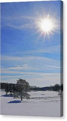Winter Wonderland 24 Canvas Print by Allen Beatty
