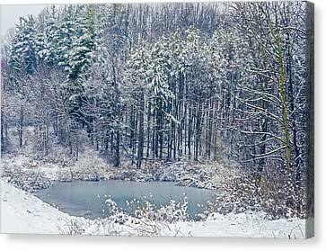 Winter Wonderland 4 Canvas Print
