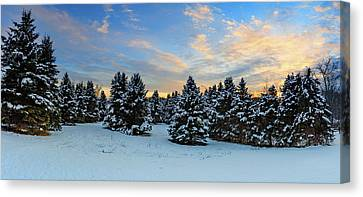 Canvas Print featuring the photograph Winter Wonderland  by Emmanuel Panagiotakis