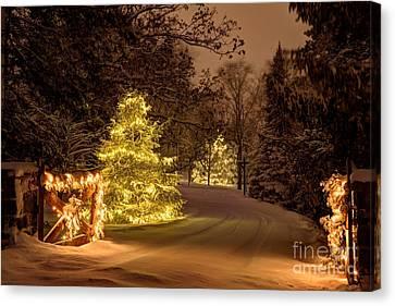 Winter Wonderland Minnesota Canvas Print by Wayne Moran