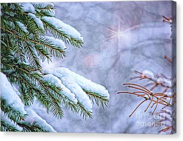 Pine Needles Canvas Print - Winter Wonderland by Sharon McConnell