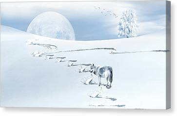 Canvas Print - Winter Wonderland - Wolf by Andrea Kollo