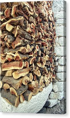Winter Woodpile Canvas Print by Paul Cowan