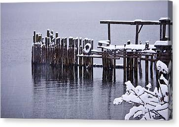 Winterized Canvas Print by Albert Seger