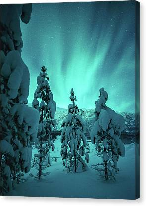 Winterland Canvas Print by Tor-Ivar Naess