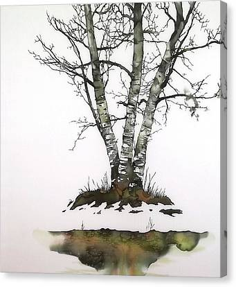 Winters Birch Canvas Print by Carolyn Doe