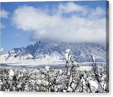Canvas Print featuring the photograph Organ Mountains Winter Wonderland by Kurt Van Wagner