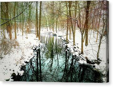 Winter's Chill Canvas Print