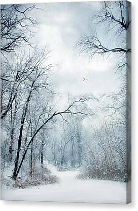 Winter's Cloak Canvas Print by Jessica Jenney