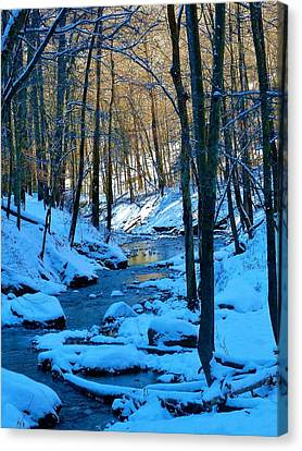 Winter's Cold Touch Canvas Print