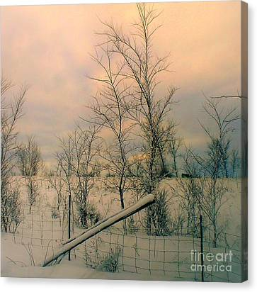 Canvas Print featuring the photograph Winter's Face by Elfriede Fulda