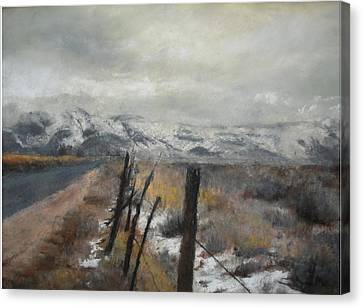 Winter's Glow Canvas Print by Anita Stoll