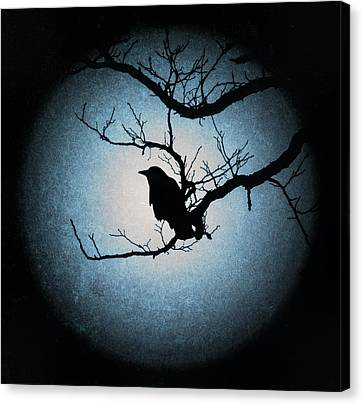 Winter's Light Black Crow Silhouette  Canvas Print by Terry DeLuco