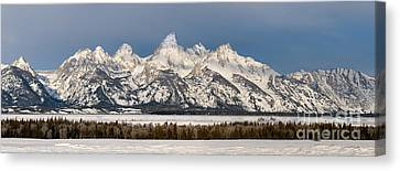 Winter's Majesty Canvas Print by Sandra Bronstein