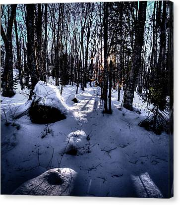Canvas Print featuring the photograph Winters Shadows by David Patterson