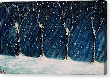 Winter's Snow Canvas Print by John Scates