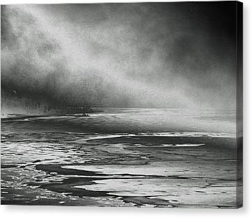Winter's Song Canvas Print by Steven Huszar