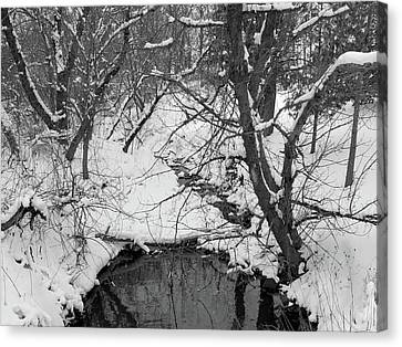 Winter's Touch Canvas Print by Scott Kingery