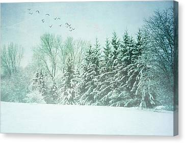 Winter's Watch Canvas Print