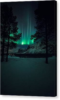 Winterspell Canvas Print by Tor-Ivar Naess