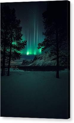 Winterspell Canvas Print
