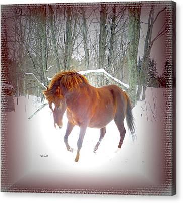 Canvas Print - Wintertime Magic by Patricia Keller