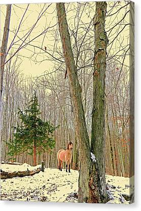 Canvas Print - Wintertime Moment by Patricia Keller