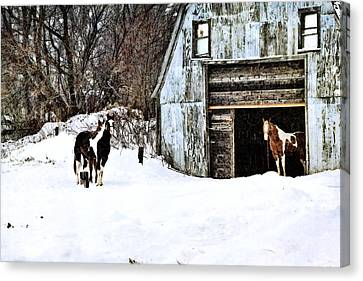 Wintery Day Canvas Print by Gary Smith