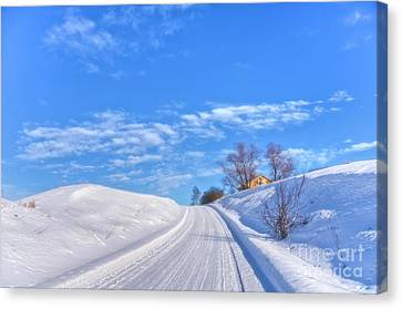 Wintry Road Takes You... Canvas Print by Veikko Suikkanen