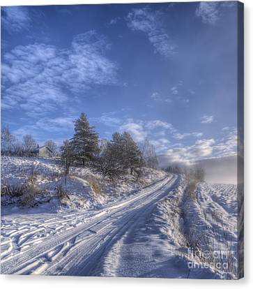 Wintry Road Canvas Print by Veikko Suikkanen