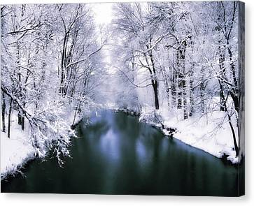 Wintry White Canvas Print by Jessica Jenney