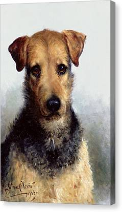 Wire Canvas Print - Wire Fox Terrier by Lilian Cheviot