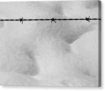 Wire Over Snow Canvas Print by Mark Alan Perry