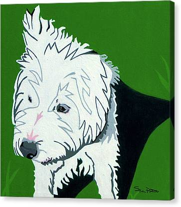 Wirehaired Jack Russell Terrier Canvas Print by Slade Roberts