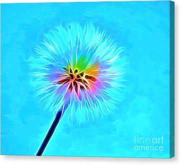 Wish From The Soul Canvas Print by Krissy Katsimbras