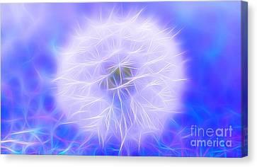 Wish Of Magic Canvas Print by Krissy Katsimbras