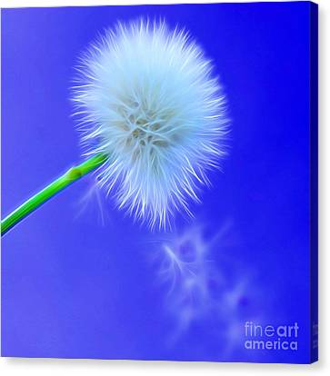 Flora Canvas Print - Wishes Set Free by Krissy Katsimbras