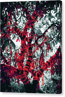 Attaching Canvas Print - Wishing Tree by Wim Lanclus